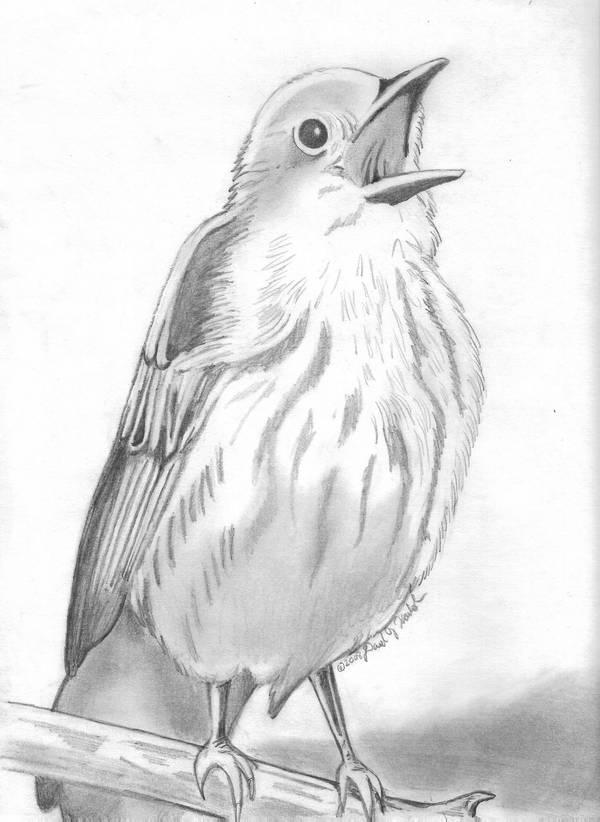 The Healing Bird by DavidFolkie