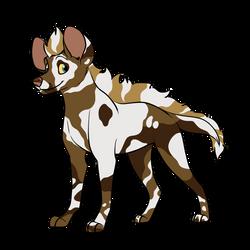 Piebald African Wild Dog Adopt CLOSED by ShadowDawn93