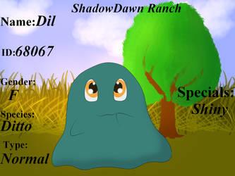 Dil Lvl 10 by ShadowDawn93