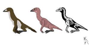 Aquaraptoriformes by ZoPteryx
