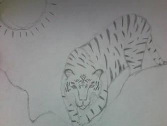 Tiger by cwiedeman