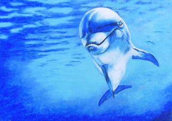 The Dolphin by devonhants