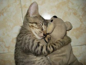 kitty + koala pt3 by mar-79