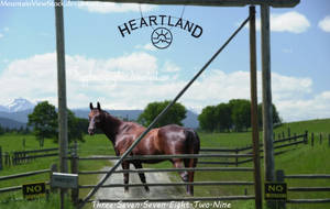 Heartland by Sapphires-Graphics