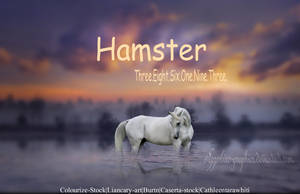 Hamster by Sapphires-Graphics