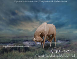 Gulliver by Sapphires-Graphics