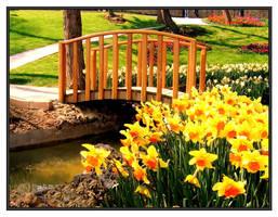 springtime by cagnur