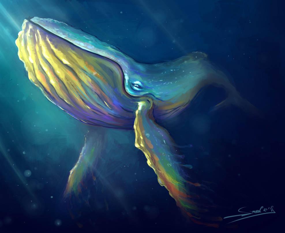 Rainbow whale by Sjoelie