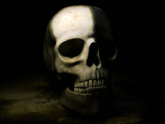 Skull by artist-tortured