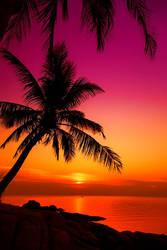 My Dream Beach by nxxos