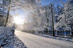Winter by veruce