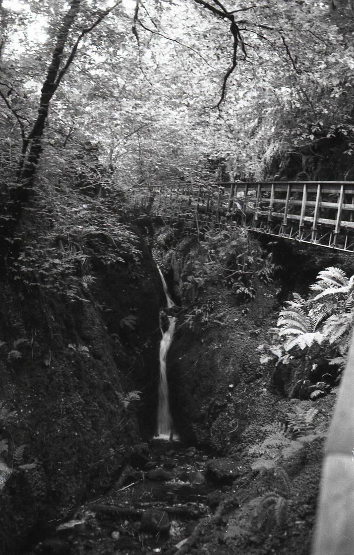 The Bridge Watcher by TheOtherBunty