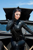 Cat In the Batmobile by RJWPhotography
