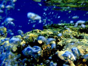 Egypt - underwater by Effree