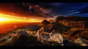 On top by Ellysiumn