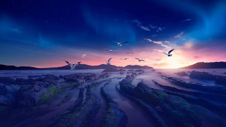 The Heaven of gulls by Ellysiumn