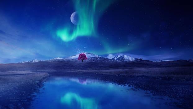 Tree of Awakening by Ellysiumn