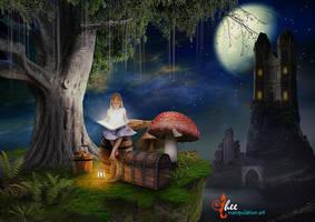 Fairy Tales_Magic Book - dheean by dheean