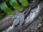 Sassafras albidum Silver Ghost Leaf by QuintessentialArts