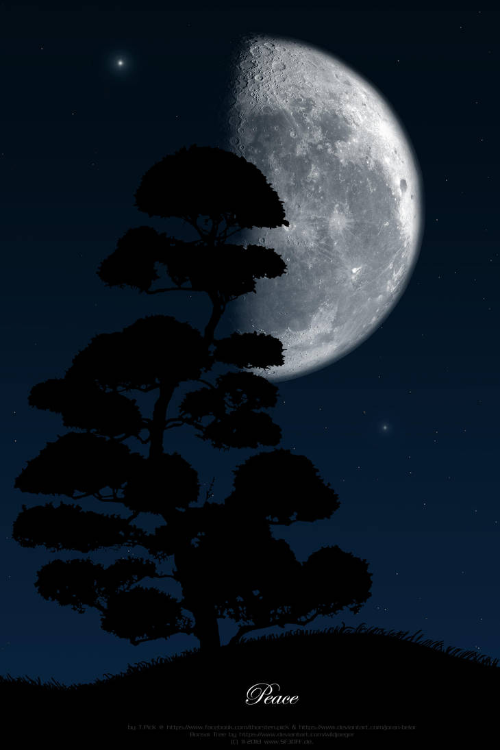 Bonsai Moon by Joran-Belar
