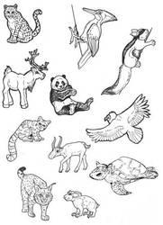 Even More Endangered Animals by lemurkat