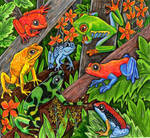 The Tree Frog Convention by lemurkat