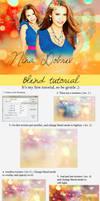 Blend tutorial by Cornelie20