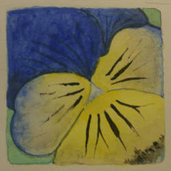 Pansy watercolor by steffy0075