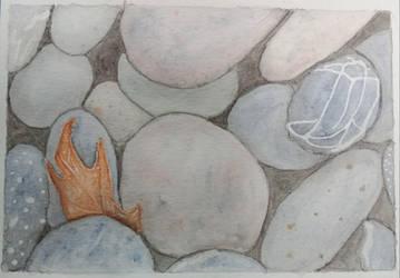 Rocks and a leaf by steffy0075