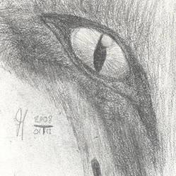 SdJ 20080112: Fox eye by archaemic