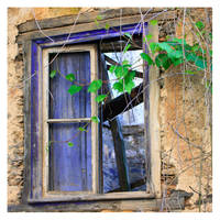 Life Goes On by Garelito-Photos