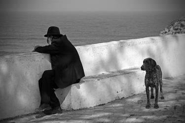A Dog's Life by Garelito-Photos