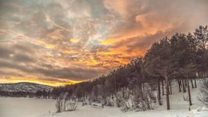 winter by SnezhanaMorozova
