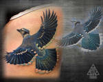 Tattoo Blue Jay by Coconut-CocaCola