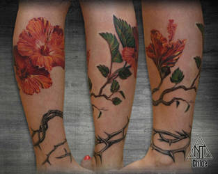 Tattoo Hibiscus by Coconut-CocaCola