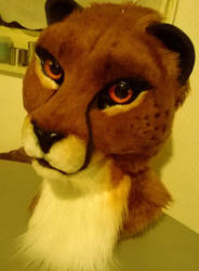 cheetah fursuit head WIP by InerriCreatures
