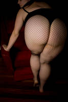I like Big butts by GoddessWillendorf