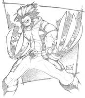 wolverine by pencildamn