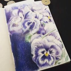 Sketchbook Pansies by ClaudiaCooper