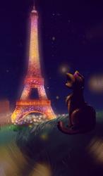 a summer in paris by monochromias