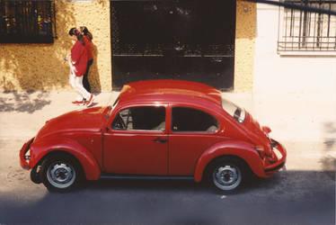 Red Bug Red Shirts by paulkarpinski