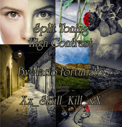 Split Toning High Contrast (XMP Camera Raw Preset) by skullkill88