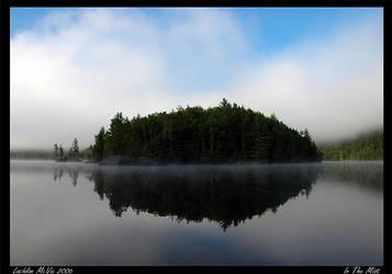 In The Mist by terapr0