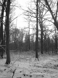 My cold Land byCrimsonCemetery by BlackMetal-Club