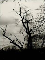 Herbstwerk by CrimsonCemetery by BlackMetal-Club