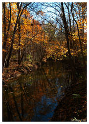 Autumn Reflection by mr-sarcastic1984