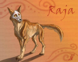Raja the dingo by Kerneinheit
