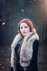 Sansa Stark by NaokoMaskai