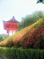 A Kyoto Summer by orangeycow