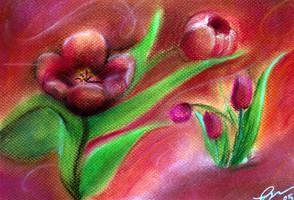 tulips by orangeycow